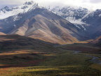 Shadows on the tundra in Denali Park