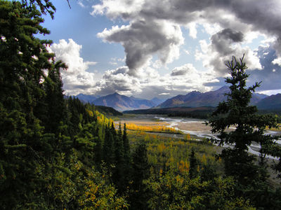 normal_P8283162_Denali_Park.JPG